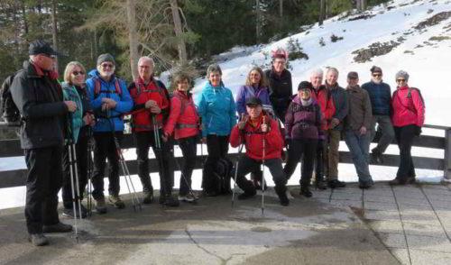 Artikelbild zu Artikel 20.02.2020 – Senioren: Wanderung auf die Stablalm