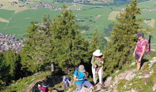 Artikelbild zu Artikel 18.06.2021 – Überschreitung des Burgberger Hörnle 1496 m, Nordöstliche Allgäuer Voralpen