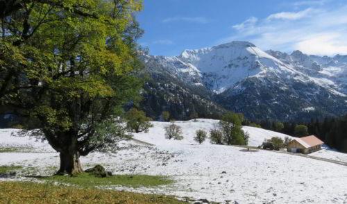Artikelbild zu Artikel 14.10.2021 – Genießer Touren: Wanderung auf die Schwarzenberghütte (1380 m)